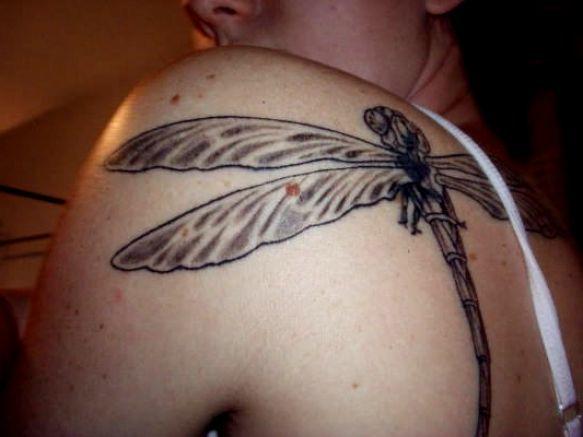 tatuaż ważka 20831