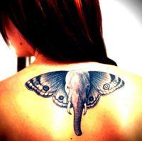 tatuaże słonie 32839