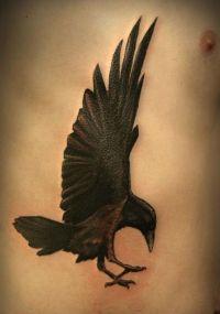 kruk tatuaż na żebrach