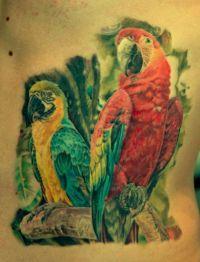 papugi tatuaż na żebrach