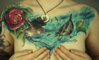 ptaki i róża