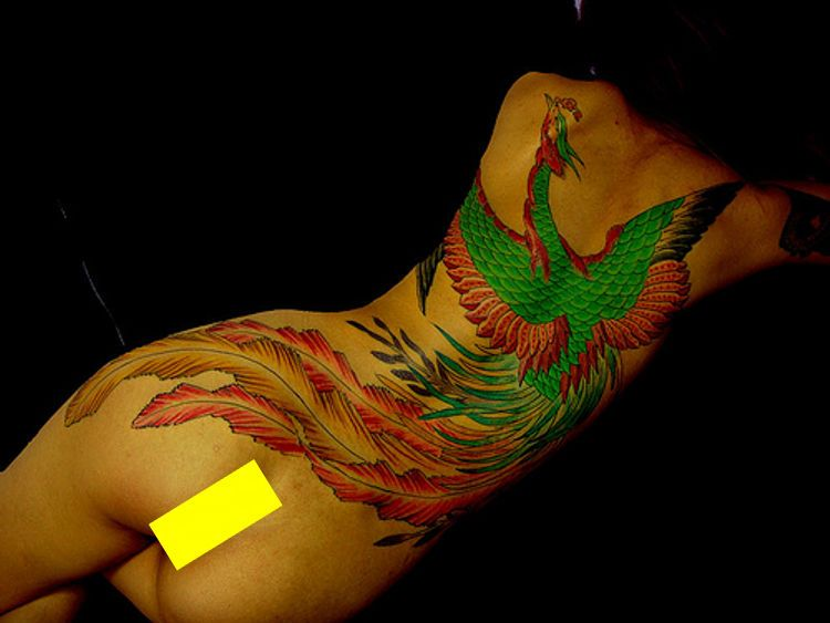kolorowy feniks tatuaż na plecach